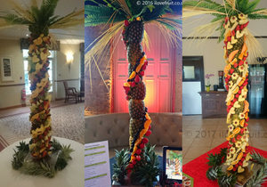 Fruit Palm Trees