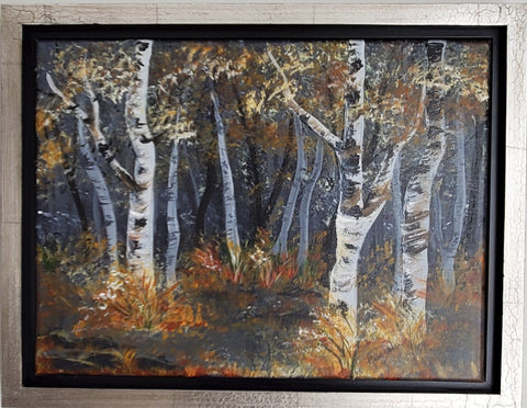 """Birch Tree Woods"""
