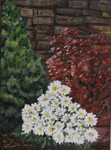 Sweet Daisies, and begonias against a brick Wall.