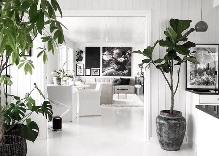 Lagom lifestyle natural home