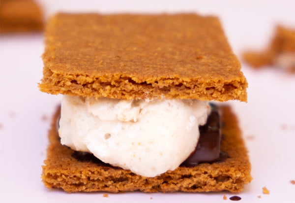close up of Paleo graham crackers with a marshmallow and square of chocolate