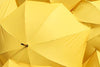 WEBINAR: Understanding the Personal Umbrella Policy 10-1-2021-NY