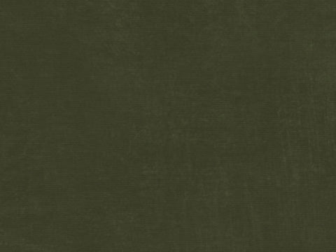 Performance Velvet Fabric - Moss Green Velvet