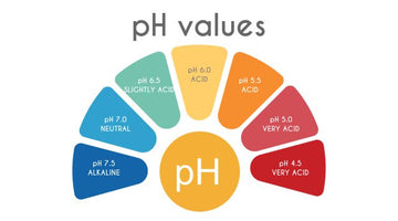 The path for Perfection in your pH Solutions and Measurements