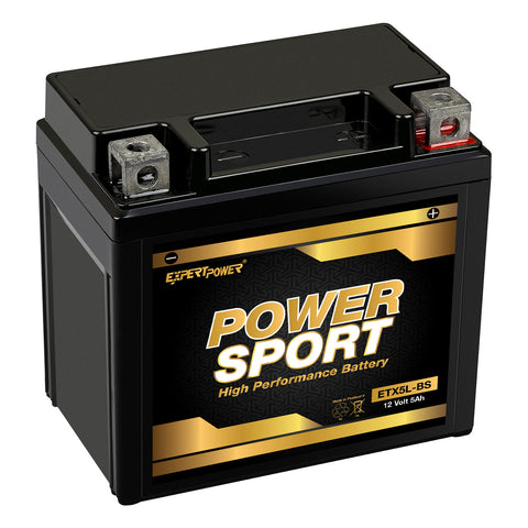 YTX5L-BS - ExpertPower Direct