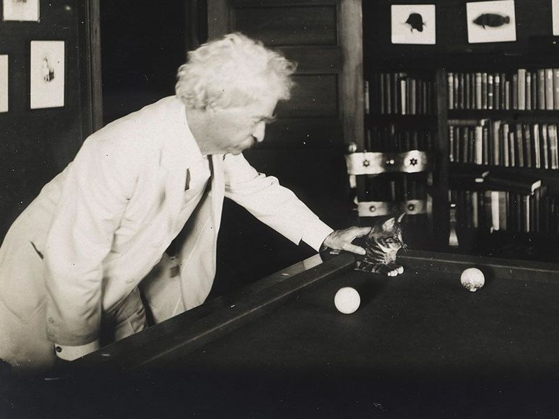 Mark Twain And His Cats