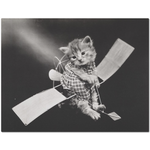 Vintage Kitten Aviator Placemat | Meow Cat Imports