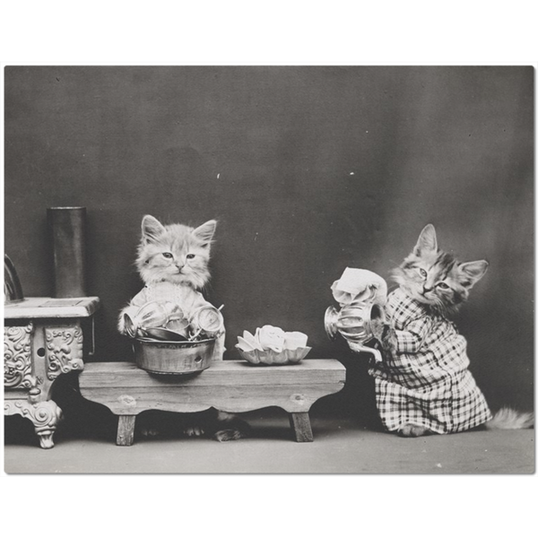 Vintage Kittens Washing Dishes Placemat