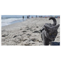 Beach Cat Towel-Meow Cat Imports