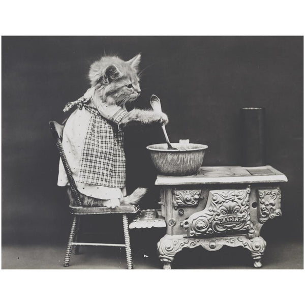 Vintage Kitten In The Kitchen Print Poster-Meow Cat Imports