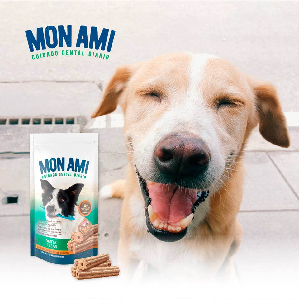 Mon Ami Dental Clean