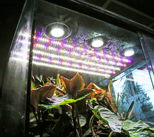 Combination LED Light Panels