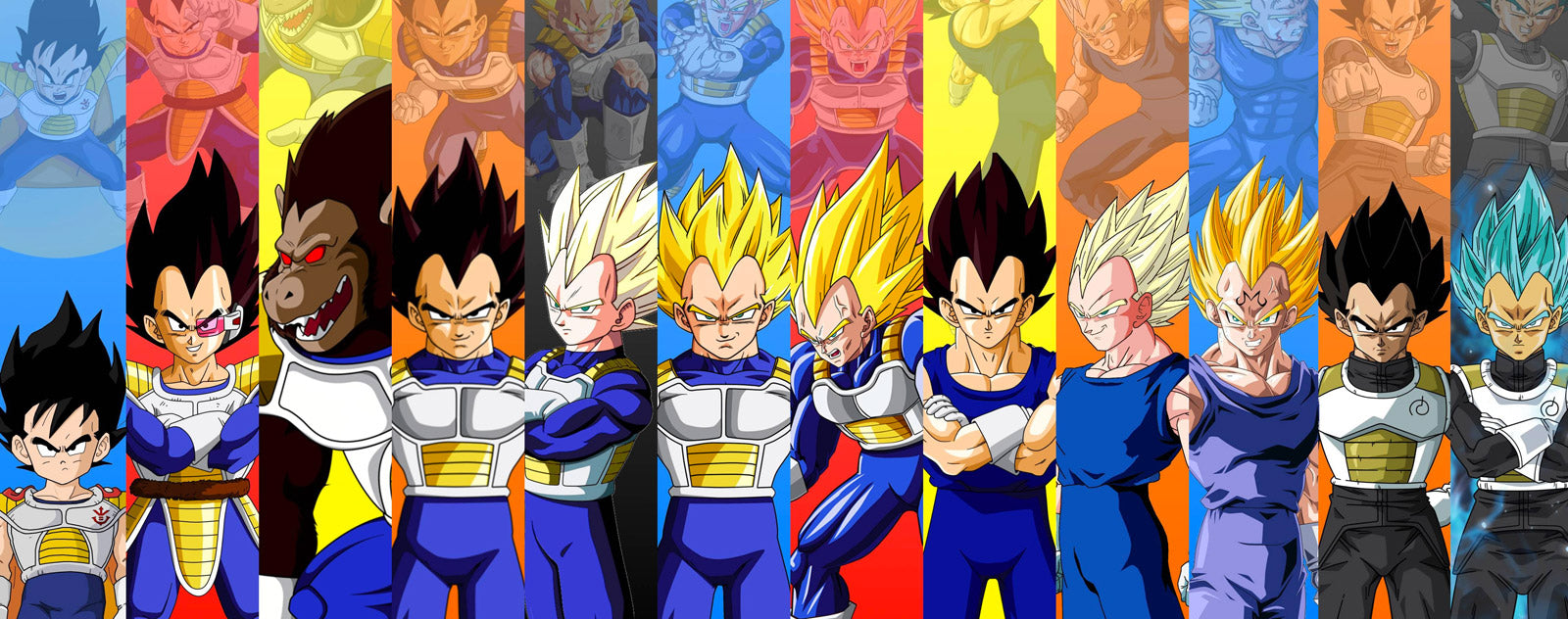 Vegeta transformations