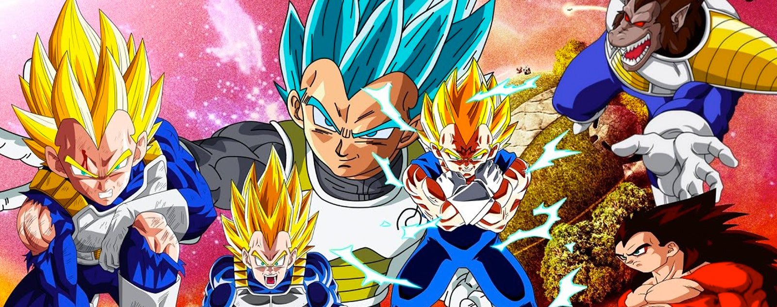 Transformations de Vegeta