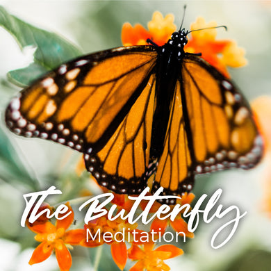 The Butterfly Meditation