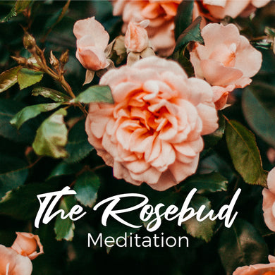 The Rosebud Meditation