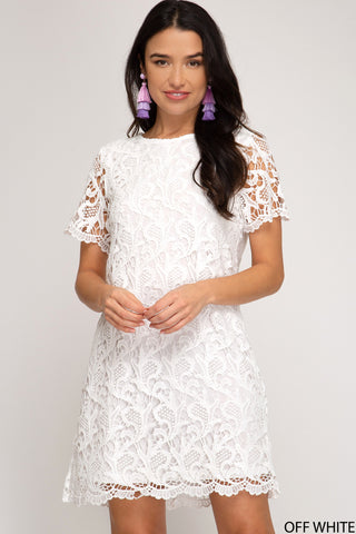 SHORT SLEEVE CROCHET LACE SHIFT DRESS WITH LINING- White