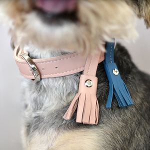 Tassel for Collars