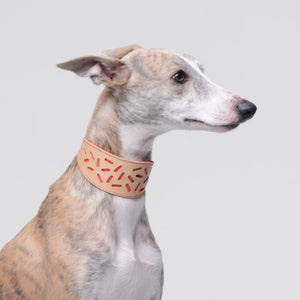 Red Greyhound Leather Collar from the Bauhaus Collection