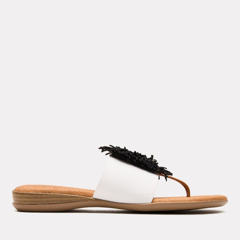 0fdd581a0 Andre Assous Sandals – Tagged