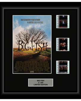 Big Fish (2003) - 3 Cell Display