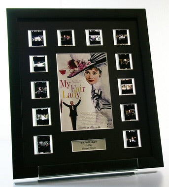 My Fair Lady - 12 Cell Classic Display