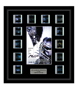 AVP: Alien vs. Predator (2004) - 12 Cell Display