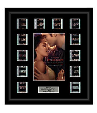 Twilight Saga: Breaking Dawn - Part 1 (2011) - 12 Cell Display