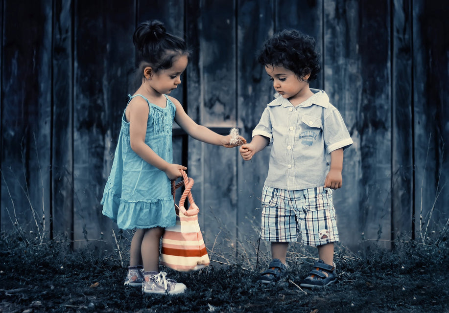 A girl is handing a dandelion in seed to a boy. They are both looking at the dandelion intently, learning more about it, perhaps?