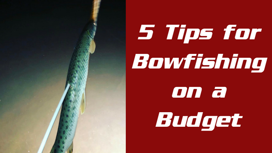 5 Tips for Bowfishing on a Budget: Where you can and can NOT cut costs