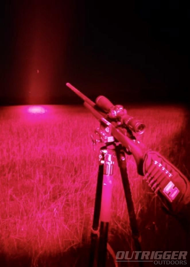 The Guide to Buying the Best Predator Hunting Lights