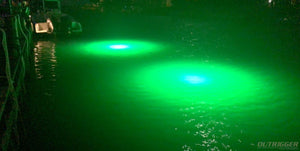 The Guide to Buying the Best Underwater Green Fishing Light