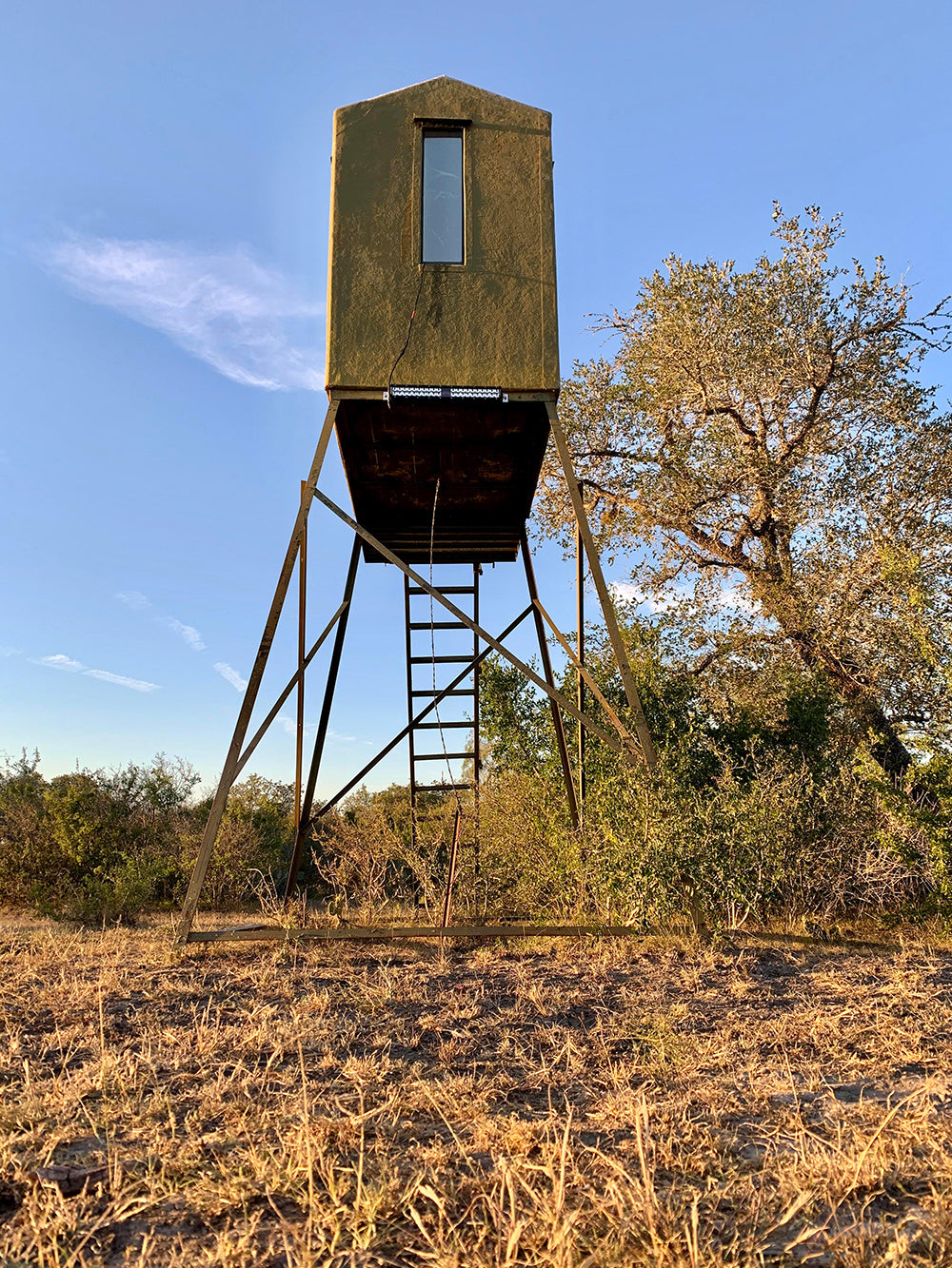 hog feeder light mounted to deer blind