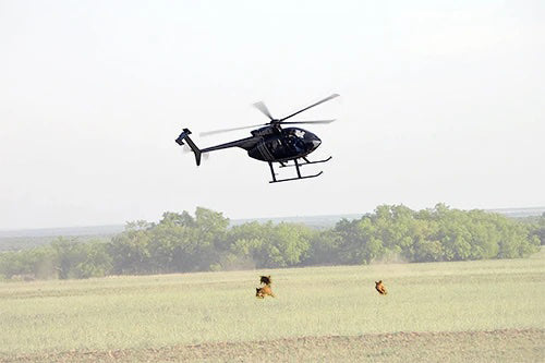 hog hunting in Texas on helicopter
