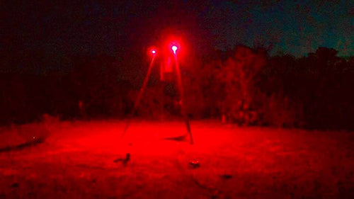 hog hunting light for feeder
