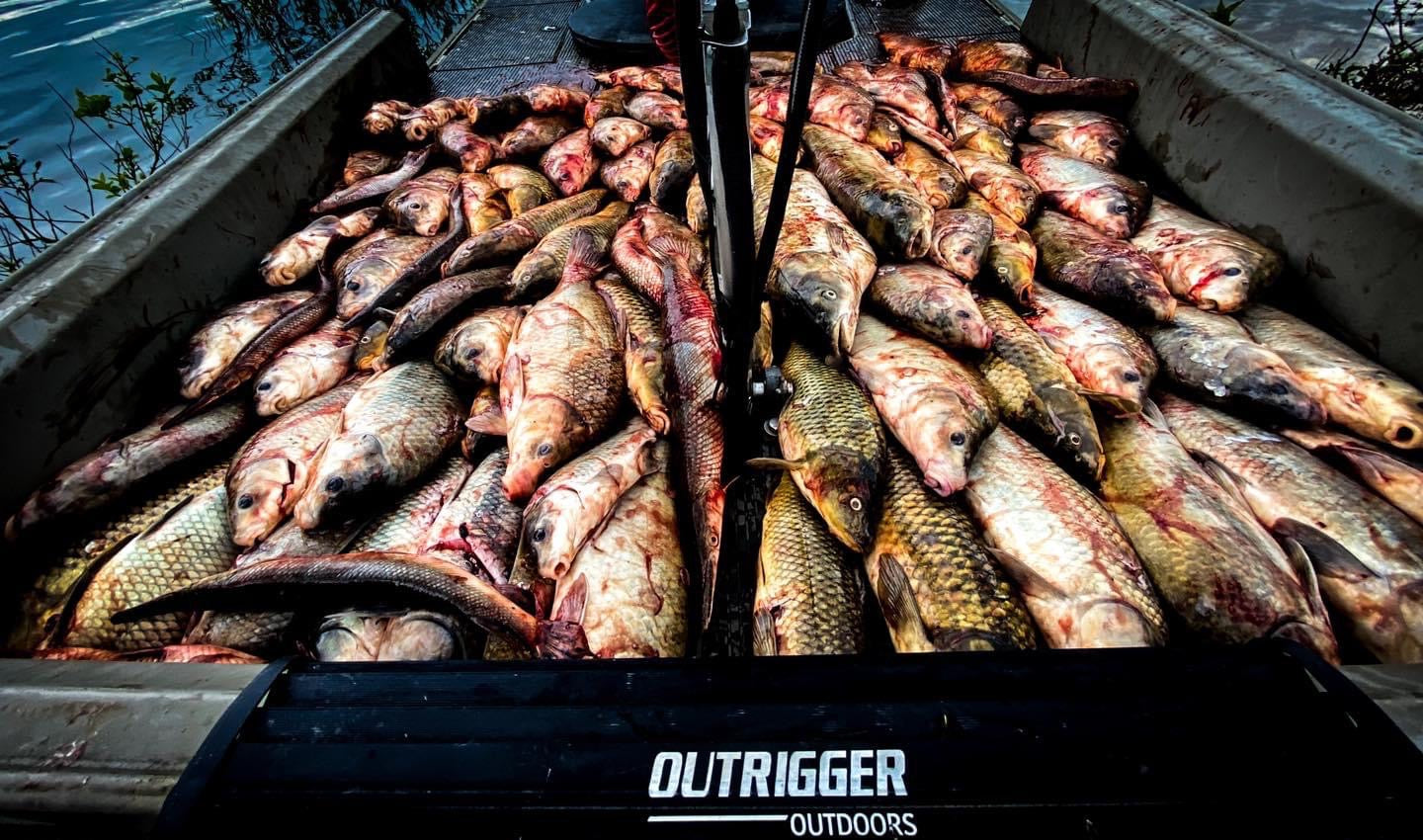 bowfishing tournament shooting numbers