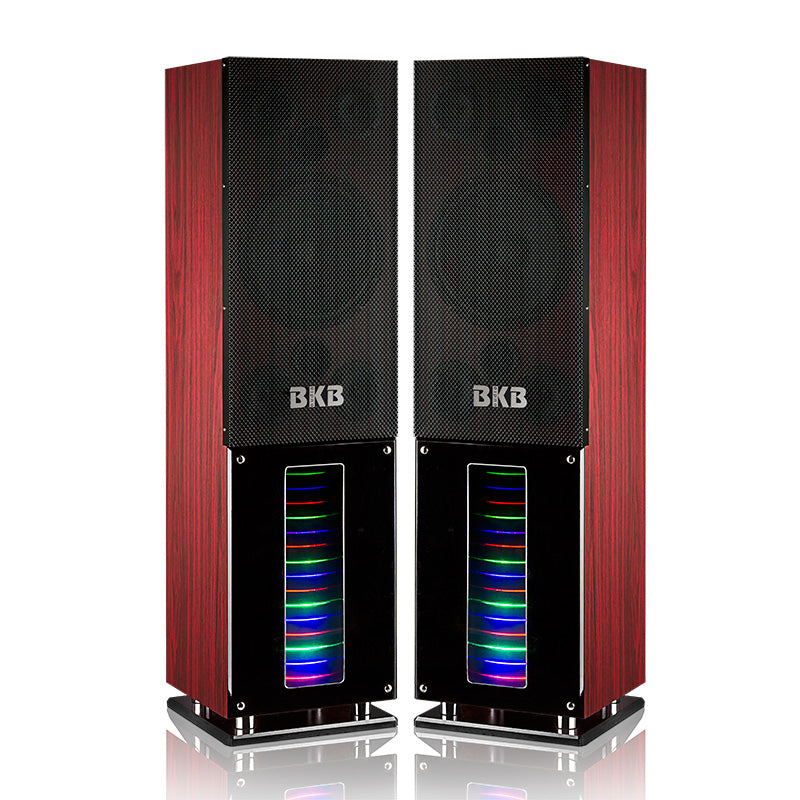 "BKB Audio SFK-10 800 Watt 10"" Woofer LED Light Karaoke Speaker - Isingtec"