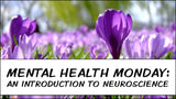 Mental Health Monday: an Introduction to Neuroscience