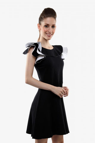 Just For The Frill Skater Dress