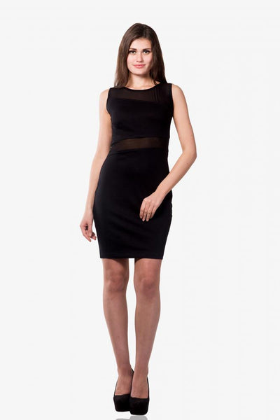 Sheer's The Word Sheer Panel Bodycon Dress