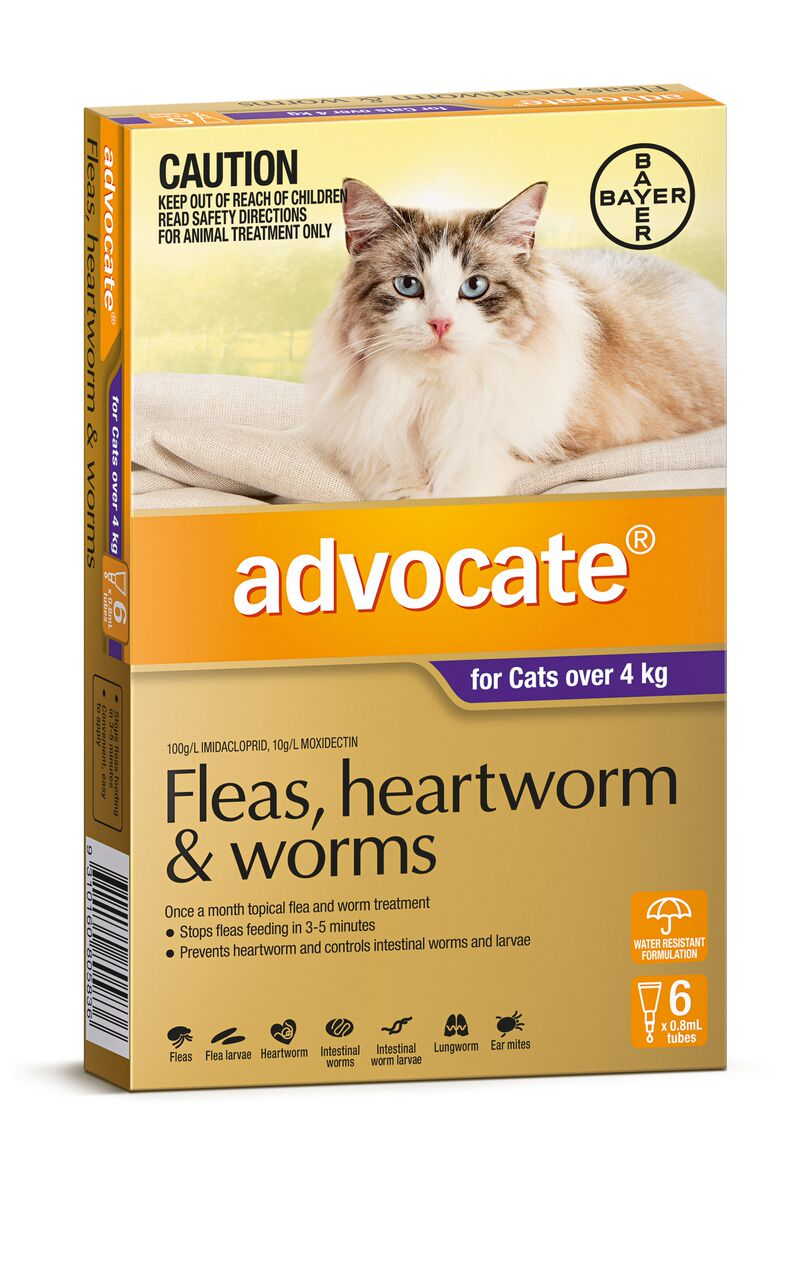 Advocate Fleas, Heartworm and Worms - for cats over 4kg