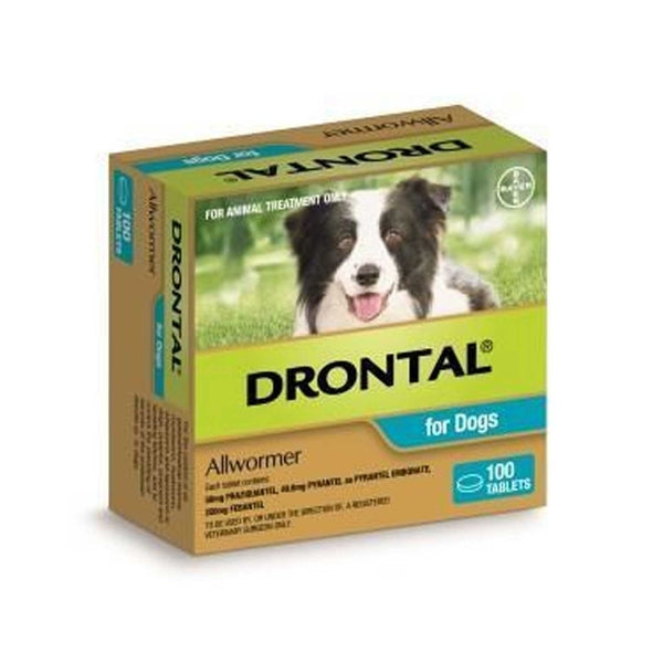 Drontal Allwormer for Dogs - 10kg (per tablet)