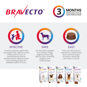 Bravecto Chewables Flea & Tick Control - Large Dog (20-40kg)