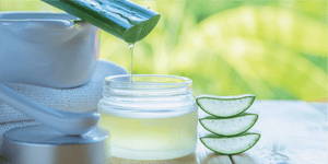 Aloe Vera Plant and Gel