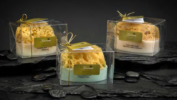 The Grecian Soap Company Goat's Milk and Olive Oil Soap with Embedded Sea Sponge, Tuberose