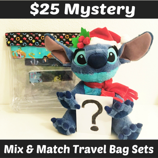 Ready To Ship - MYSTERY Mix & Match Travel Bag Set