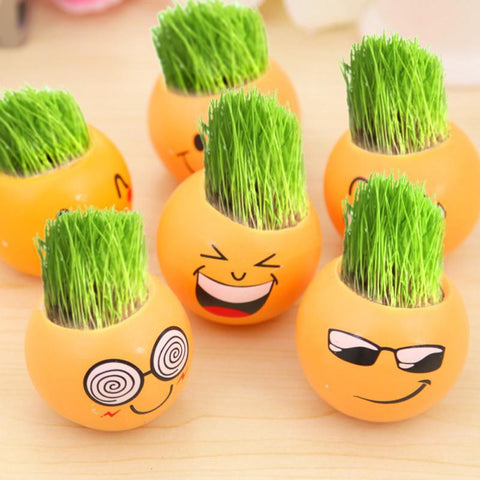 Grow Your Own Grass Hair - Creative DIY