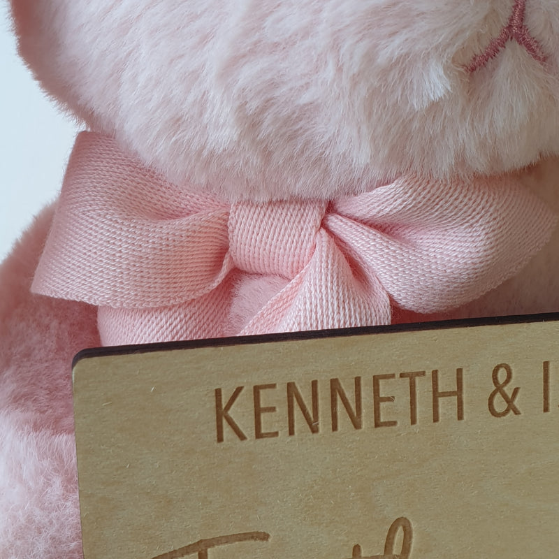 Pink - Valentine's Hunny Bunny with Together Since Plaque