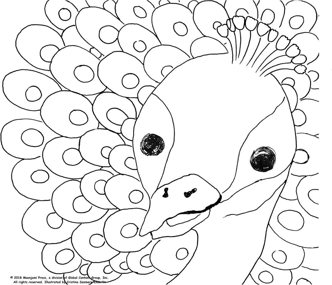 Printable: Peacock coloring page