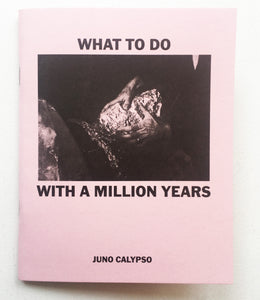 WHAT TO DO WITH A MILLION YEARS by Juno Calypso